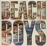 The Beach Boys Vinyl