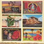 The Beach Boys Vinyl