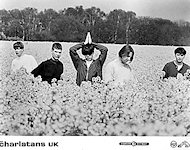 The Charlatans UK Promo Print