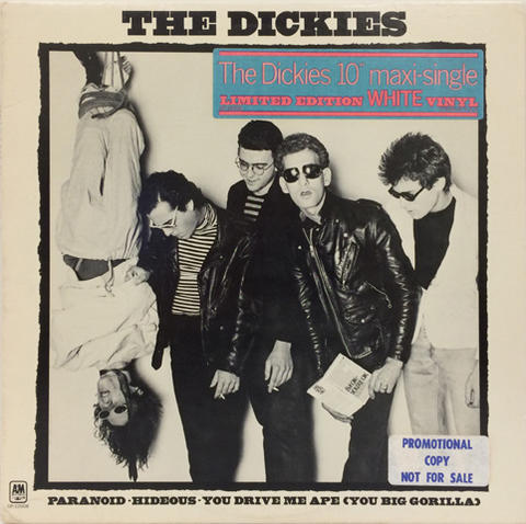 The Dickies Vinyl (Used)