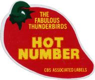 The Fabulous Thunderbirds Pin