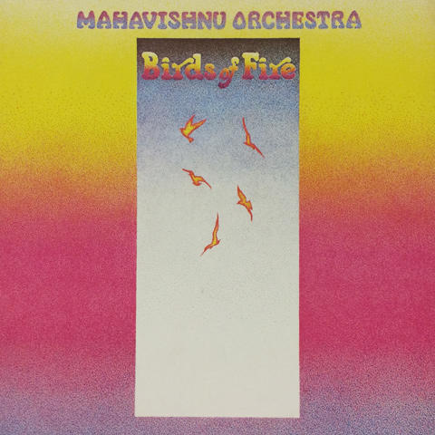 The Manhavishnu Orchestra Vinyl (Used)