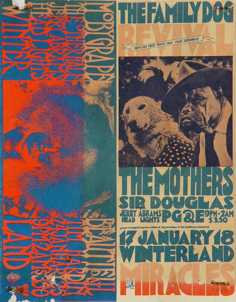 The Mothers of Invention Postcard