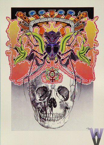 The Skull Postcard