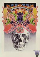 The Skull Postcard