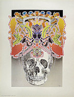 The Skull Poster