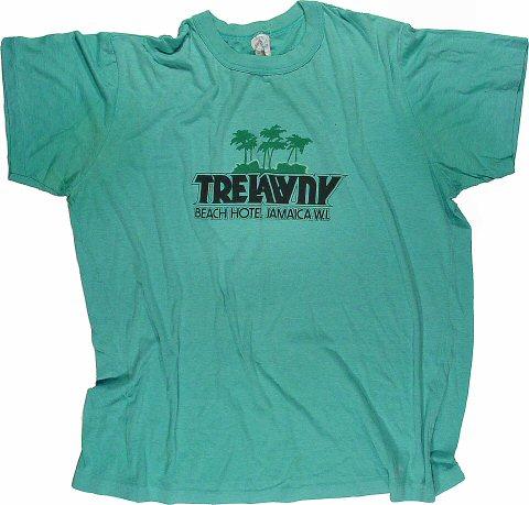 TrelawnyMen's Vintage T-Shirt