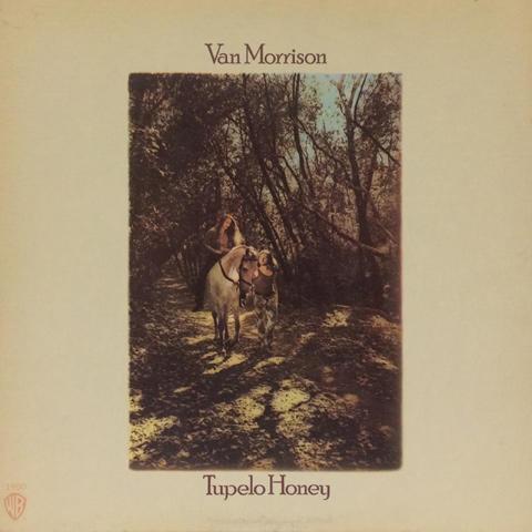 Van Morrison Vinyl (Used)