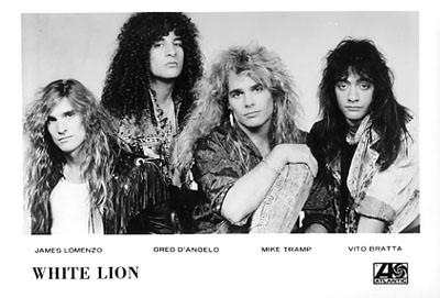 White Lion Promo Print