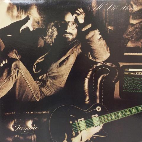 """Al Di Meola Vinyl 12"""" (Used)"""