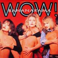 "Bananarama Vinyl 12"" (Used)"