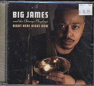 Big James & The Chicago Playboys CD