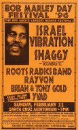 Bob Marley Day Festival Poster