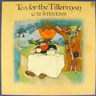 """Cat Stevens Vinyl 12"""" (Used)"""