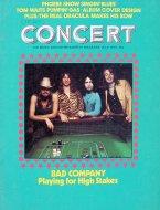 Chicago Concert Magazine July 1975 Magazine