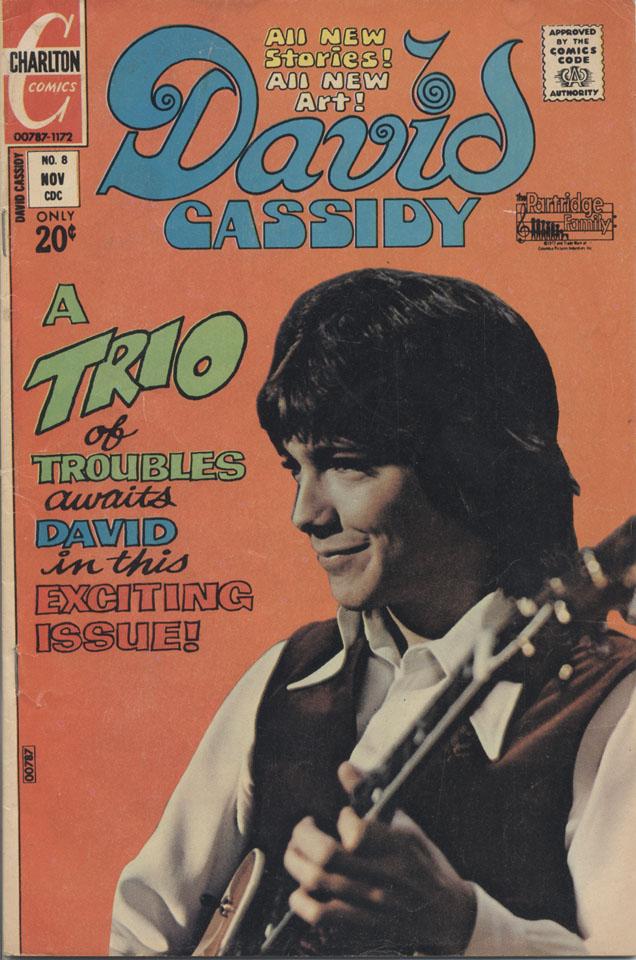 David Cassidy Vol. 1 No. 8