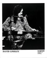 David Lindley Promo Print