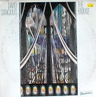 "David Sancious Vinyl 12"" (Used)"