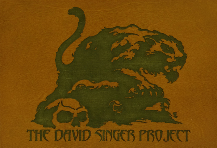 David Singer Project Playing Cards reverse side