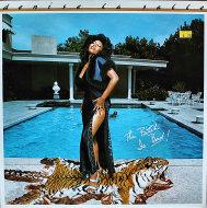 "Denise LaSalle Vinyl 12"" (Used)"