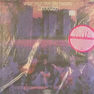 """Donovan Vinyl 12"""" (New)"""