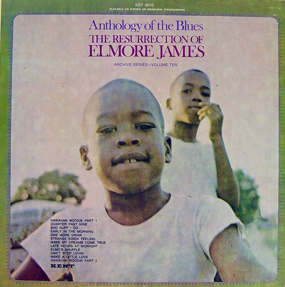 """Elmore James Vinyl 12"""" (Used)"""