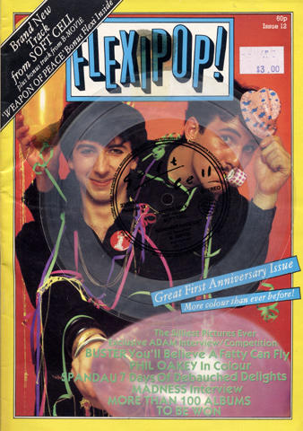 Flexipop! Issue 12 Magazine