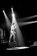 Freddie Mercury Fine Art Print
