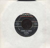 """Gene Pitney Vinyl 7"""" (Used)"""