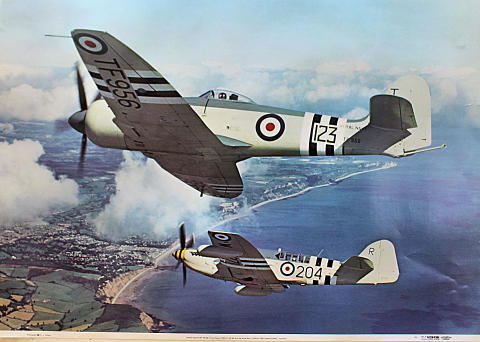 Hawker Sea Fury FB Mk 11 and Fairy Firefly AS Mk 5 Poster