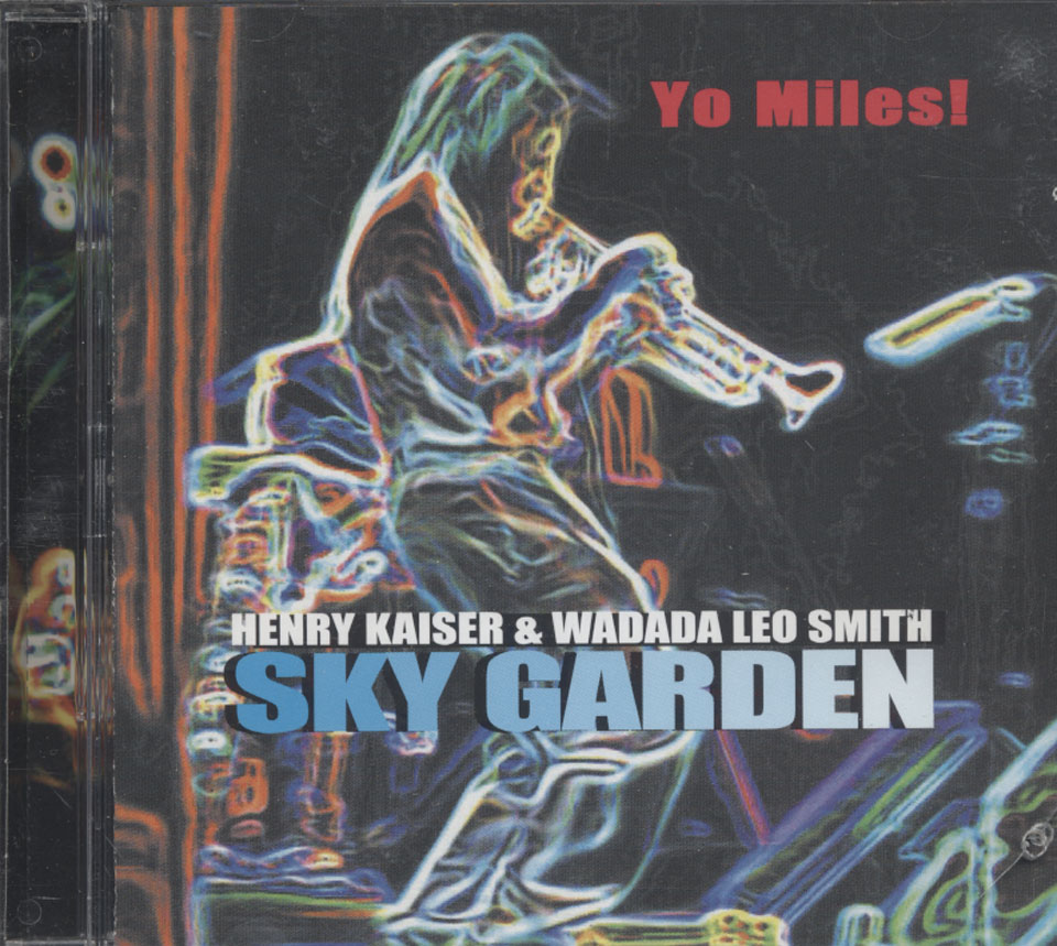 Henry Kaiser & Wadada Leo Smith CD