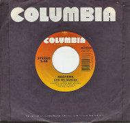 "Hooters Vinyl 7"" (Used)"