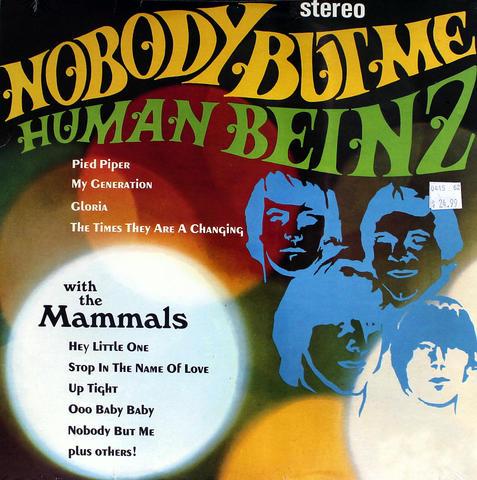 """Human Beinz Vinyl 12"""" (New)"""