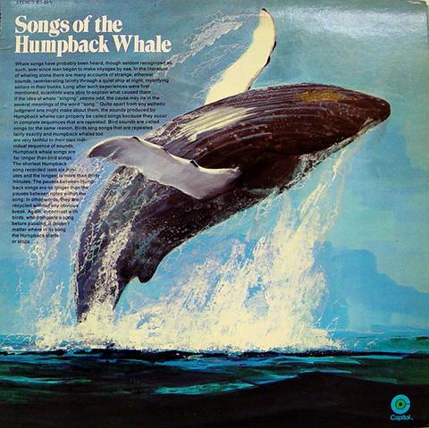 "Humpback Whale Vinyl 12"" (Used)"