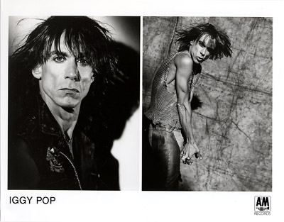 Iggy Pop Promo Print