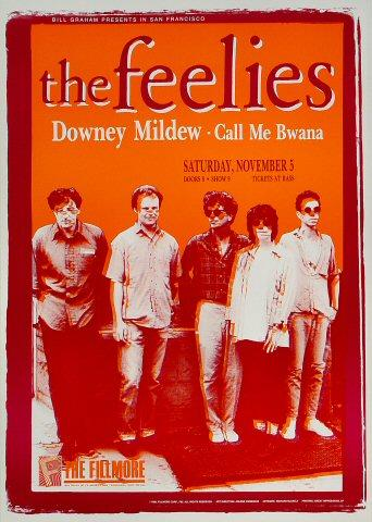 The Feelies Poster