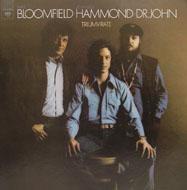 """Bloomfield Vinyl 12"""" (Used)"""