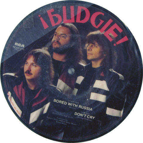 """Budgie Vinyl 7"""" (Used)"""