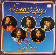 "The Beach Boys Vinyl 12"" (New)"