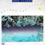 "Free Flight Vinyl 12"" (Used)"