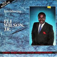 "Eli Wilson, Jr. Vinyl 12"" (Used)"
