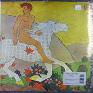 "Fleetwood Mac Vinyl 12"" (New)"
