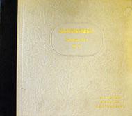 "Szostakowicz Vinyl 12"" (Used)"
