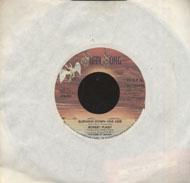 "Robert Plant Vinyl 7"" (Used)"