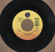 """The Ramones Vinyl 7"""" (Used)"""