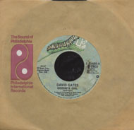 "David Gates Vinyl 7"" (Used)"