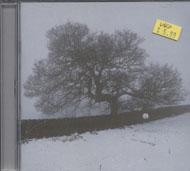 k.d. lang CD