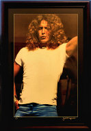 Robert Plant Vintage Print