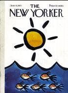 The New Yorker Vol. XLVIII No. 16 Magazine