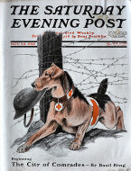 The Saturday Evening Post Vol. 191 No. 29 Magazine